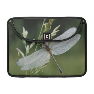 Dew covered Darner Dragonfly Sleeve For MacBook Pro