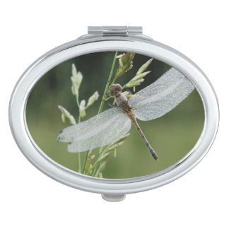 Dew covered Darner Dragonfly Vanity Mirrors