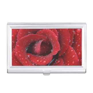 Dew covered red rose decorating grave site in business card holder