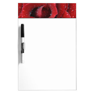 Dew covered red rose decorating grave site in dry erase board
