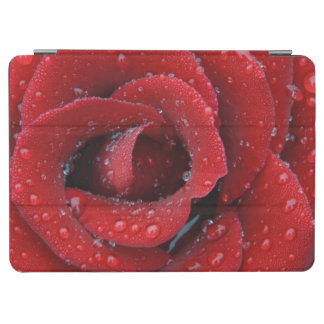 Dew covered red rose decorating grave site in iPad air cover