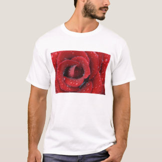 Dew covered red rose decorating grave site in T-Shirt