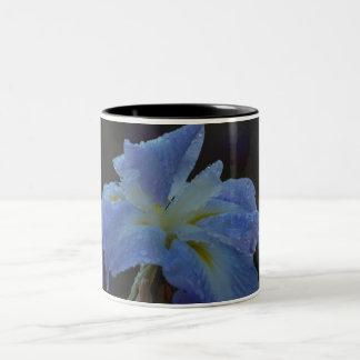 Dew-dropped Iris Two-Tone Mug