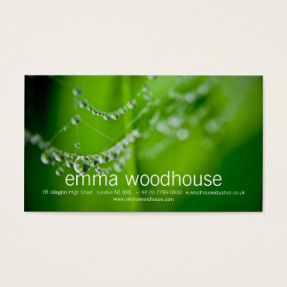 Dew Drops Business Card