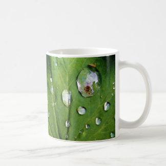 Dew Drops On A Leaf Basic White Mug