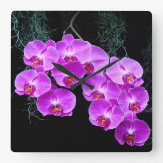 Dew-Kissed Orchids Wall Clock