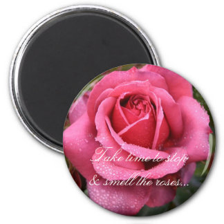 Dew Kissed Pink Rose! Magnet