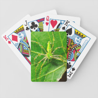 Dew on a Green Lynx Spider Bicycle Playing Cards