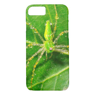 Dew on a Green Lynx Spider iPhone 8/7 Case