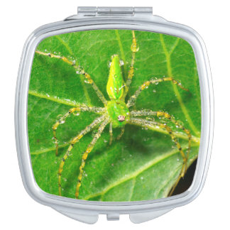Dew on a Green Lynx Spider Makeup Mirror