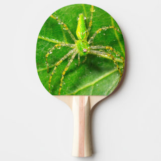 Dew on a Green Lynx Spider Ping Pong Paddle