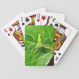 Dew on a Green Lynx Spider Playing Cards