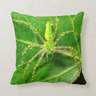 Dew on a Green Lynx Spider Throw Pillow