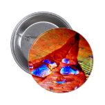 Dew on a Leaf Pinback Button