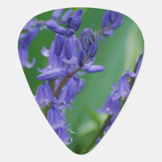 Dew on Bell Flowers Guitar Pick