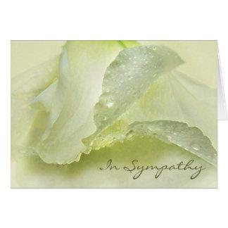 Dew on Ivory Petals Sympathy Condolence Card
