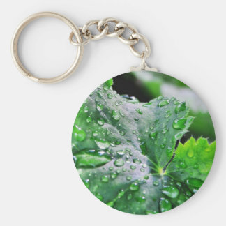 Dew Water Droplets Drops Key Ring