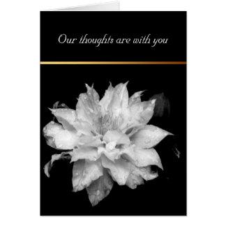 Dewdrops Clematis 3 Condolences Sympathy Note card