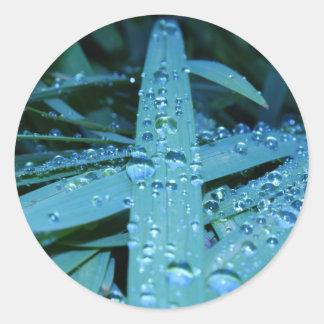 Dewy Blue Grass Round Sticker