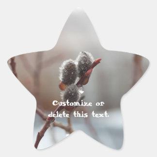 Dewy Catkin; Customizable Star Sticker