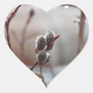 Dewy Catkin Heart Stickers