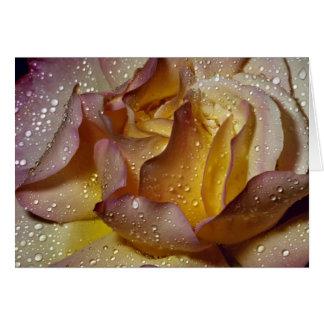 Dewy, dusty yellow rose greeting card