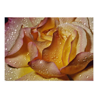 Dewy dusty yellow rose flowers personalized invitations