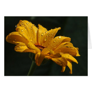 Dewy Flower Note Card