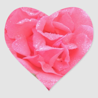 Dewy Pink Rose Heart Sticker