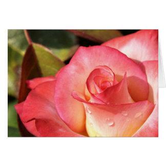 Dewy Rose Note Card