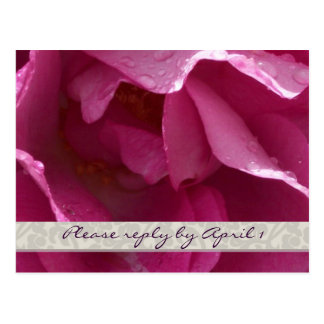 Dewy Rose rsvp Postcard