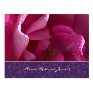 Dewy Rose Save the Date Postcard