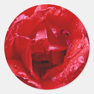 """Dewy Rose - Sticker 3"""""""