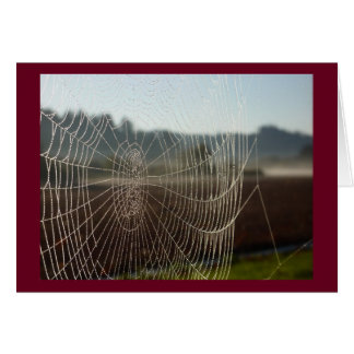 Dewy Web Greeting Card