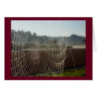 Dewy Web Greeting Card