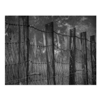 Dewy Webs on Barbed Wire Postcard