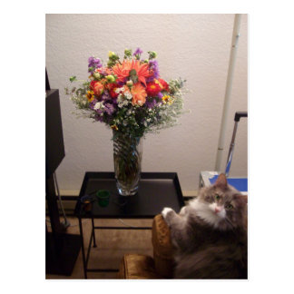 Dexter and Flowers Post Cards