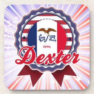 Dexter IA Coaster