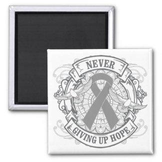 Diabetes Never Giving Up Hope Fridge Magnets