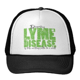 Diagnosing Lyme Disease Mesh Hats