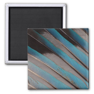 Diagonal Wing Feather Design Magnet