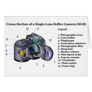 Diagram of a Single Lens Reflex Camera SLR Cards