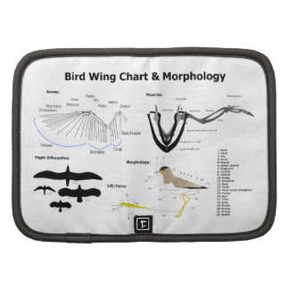 Diagram of the Anatomy of Bird Wings Folio Planners