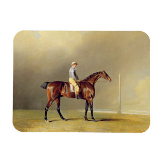 Diamond, with Dennis Fitzpatrick Up, 1799 (oil on Rectangular Photo Magnet