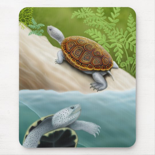 Diamondback Terrapin Turtles Mousepad