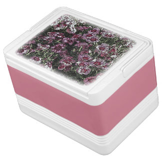 DIANTHUS IGLOO COOLER