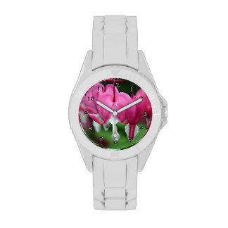 Dicentra Bleeding Hearts Flower Watch