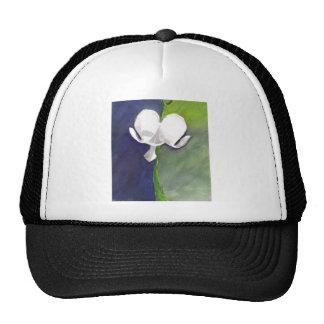 Dichotomy Cap