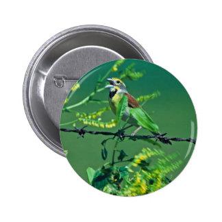 Dickcissel 6 Cm Round Badge
