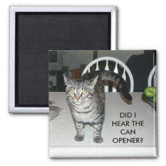 DID I HEAR THE CAN OPENER? MAGNET